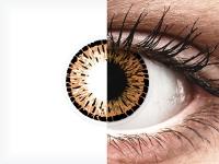 Barna ColourVUE Elegance kontaktlencse - dioptria nélkül (2db lencse)