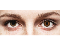 Barna Expressions Colors kontaktlencse - dioptria nélkül (1 db lencse)