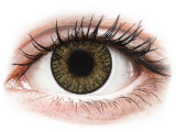 alensa.hu - Kontaktlencsék - Mogyorószínű FreshLook ColorBlends kontaktlencse - dioptriával