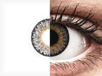 Szürke Freshlook One Day Color kontaktlencse - dioptria nélkül (10 db lencse)