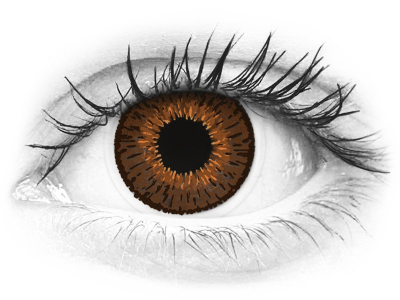 Barna Expressions Colors kontaktlencse - dioptriával (1 db lencse)
